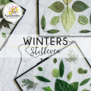 De Aardvrouw Winters Stilleven Workshop